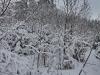 130203037_b_winterlandschaft