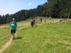 130714051_b_oberallgaeuer-rundwanderweg