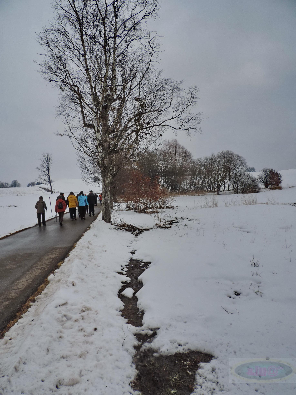 150222013_B_Weg nach Giessenweiler.jpg