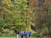 151011021_B_Herbstlicher Wald