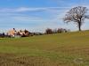 151108016_B_Kloster Reurte Baumsiluette
