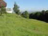 170526034_B_Rothof Rhein Vogesen
