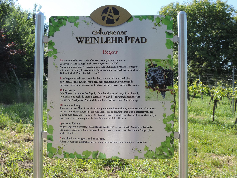 170527042_BSch_Auggner Weinlehrpfad