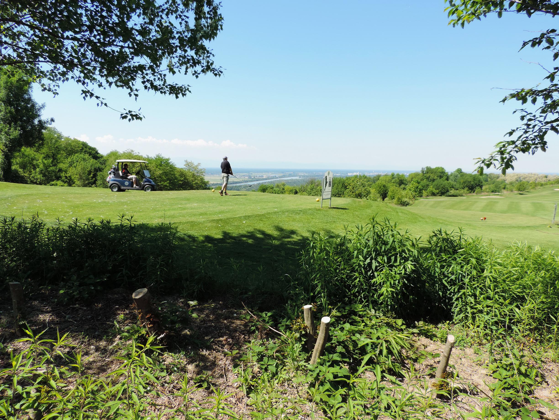 170527107_B_Golfplatz bei Bamlach