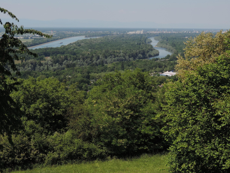 170527112_B_Rhein und Rheinkanal