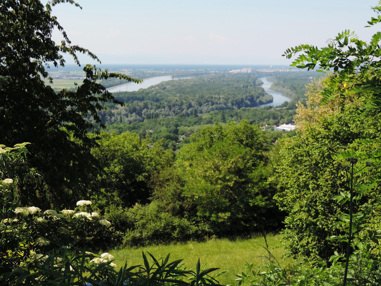 170527123_B_Rhein und Rheinkanal