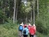 170924008_B_Wandergruppe im Wald