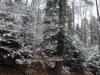 180318022_B_Winter Landschaft Schnee Wasser