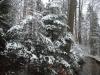 180318023_B_Winter Landschaft Schnee Wasser