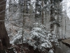 180318025_B_Winter Landschaft Schnee Wasser