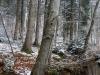 180318026_B_Winter Landschaft Schnee Wasser