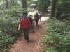 180527008_B_Aufstieg im Wald