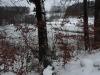 190113046_B_Seen um Elfenweiher