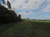 190621045_B_zwischen Erlach und Buechelberg