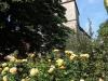 190622013_B_St. Johanniskirche