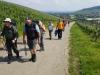 170525037_Dorf Ebringen_